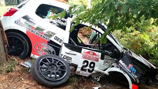 BEST OF RALLY 2015 CRASH MISTAKES AND SHOW !!!