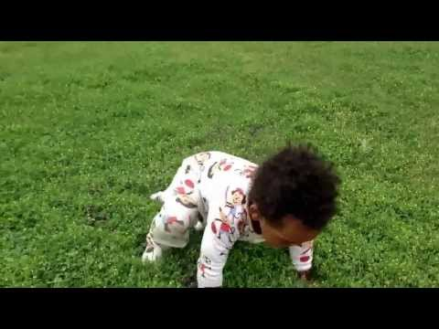 Teach your baby to walk at a park