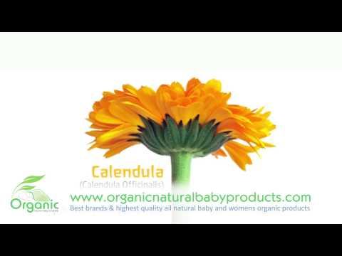 Weleda's Calendula Organic Baby Lotion Eczema babies, Mothers & Women's