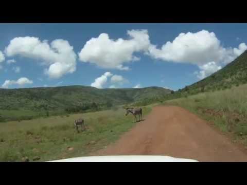 Pilanesberg GOPRO 2014