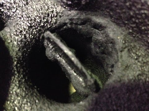 Mitsubishi Turbo diesel secrets, the hidden ugly side of soot.