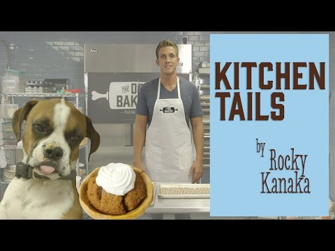 How to Make a Pumpkin Pie for Dogs : Kitchen Tails with Rocky Kanaka
