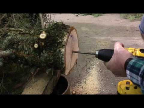 How to Set Up a Bowling's Last Stand Christmas Tree Stand