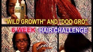 Wild Growth And Doo Gro 6 Week Hair Challenge Music Jinni