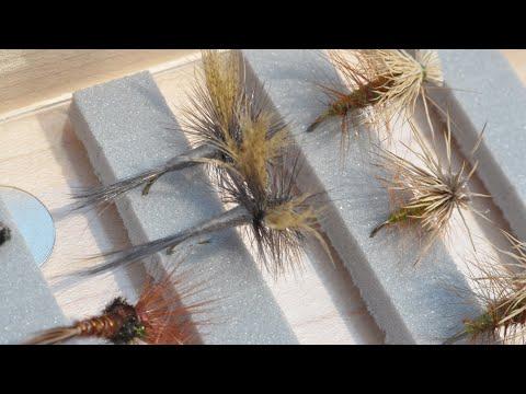 New Stuff & Fly Fishing Q&A LIVE