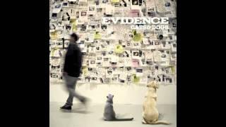 Evidence - Good Times