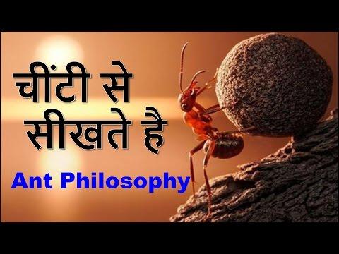 चींटी से  सीखते है  | Ant Philosophy | Motivational video in hindi