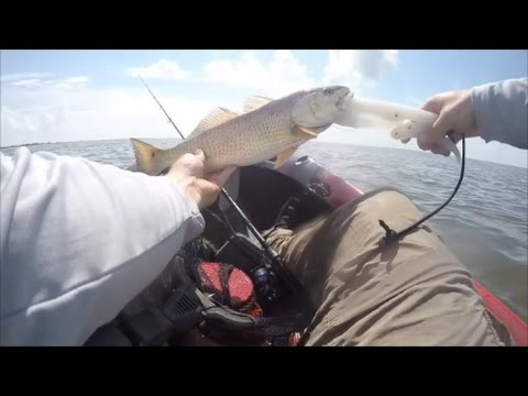 Sight Casting To Tailing Reds Ft. TrailChaser