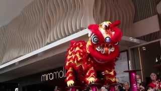 MMS:DKU - Chinese New Year
