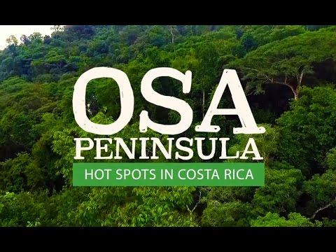 Discover the Osa Peninsula & Corcovado National Park