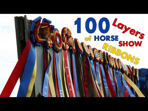 100 Layers of Horse Show Ribbons!