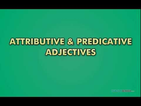 Grammar for Kids: Attributive and Predicative Adjectives Video