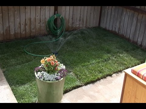 Sod Installation Fast and Easy