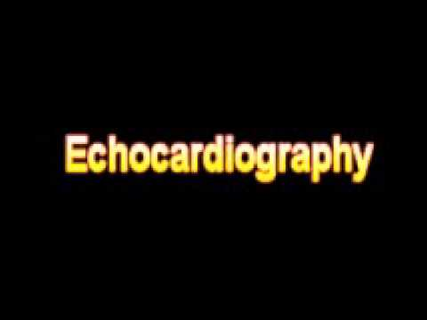 What Is The Definition Of Echocardiography - Medical Dictionary Free Online