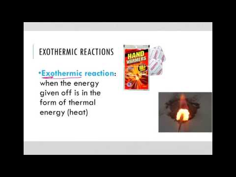 Exergonic and Endergonic Reactions