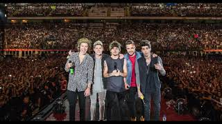 One Direction - Little White Lies (Live from San Siro)