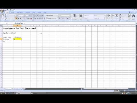 Excel 2007:  How to use the Year command