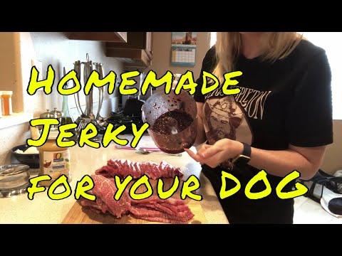 Home Made Apple Blueberry Jerky Treats For Dogs - Home Made Dog Treats