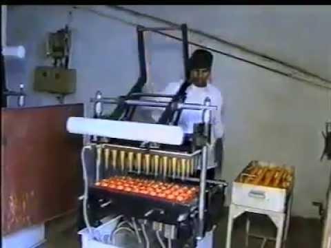 Titan Scales, Ice Cream Cone Making Machine