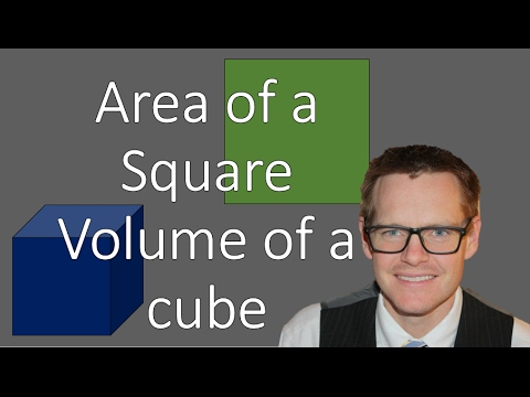Area of Squares and Volume of Cubes (Simplifying Math)