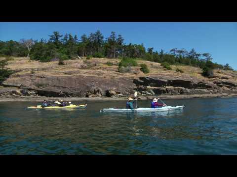 Shearwater Adventures- Sea Kayak Tours, Sales & Supplies, Orcas Island, WA