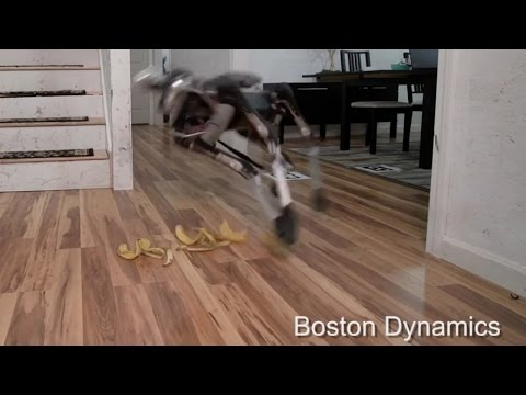 Boston Dynamics' New Robot Dog Is Defeated By Banana Peels