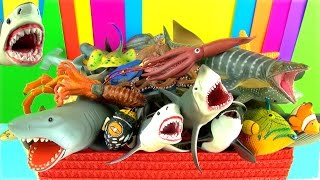 Shark Toys Collection Whales Fish Turtles Toys for Kids Tiburón Tubarão Jaws