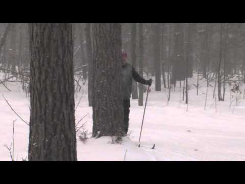 Great Getaways: Cross-Country Skiing - Roscommon County, MI
