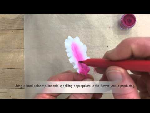 How to create a Gumpaste Lily