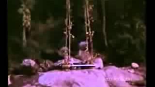 Rasathi Unna kanatha nenju tamil ilayaraja 360p   YouTube 240p
