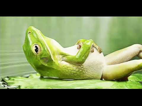 Louise Hay ➖ Best Relaxing Meditation For Deep Sleep