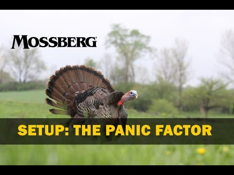 Turkey Hunting: Two Mistakes Made When He Gobbles