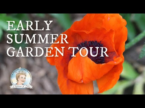 Early Summer Garden Tour