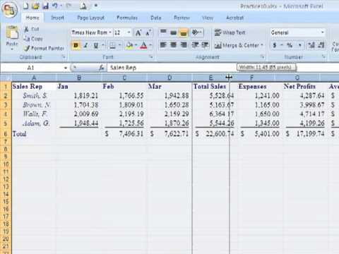 Excel 2007-10 Selecting and Changing Widths of Rows and Columns