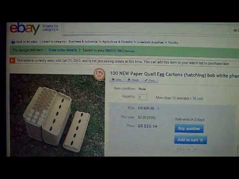 Ebay Notification That I Found :)