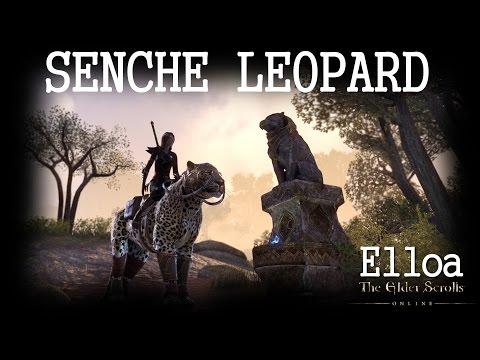 ESO - Senche Leopard Mount (Limited Edition)