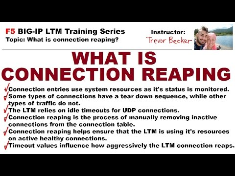 Download What is connection reaping? | Video 7 | Free F5 LTM