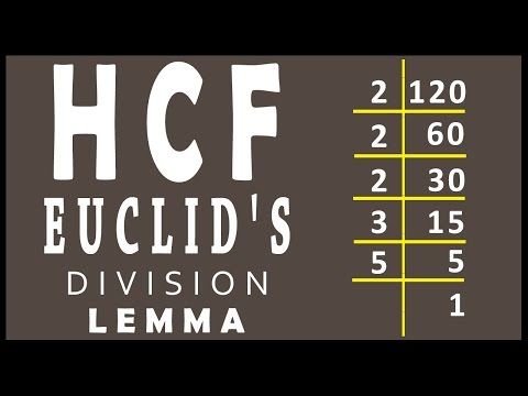 Finding HCF using Euclid's Division Lemma in real numbers | Math | Letstute