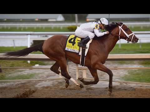 Cheer for Audible the Racehorse: Kentucky Derby 2018 #GoAudible