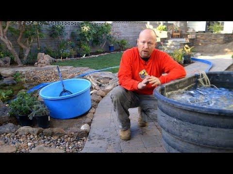 Pond Care | Spring Pond Maintenance 1 of 5