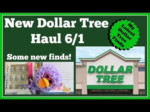 New Dollar Tree Haul 🤑 6/1