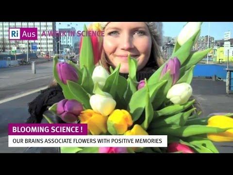 Blooming Science   A Week in Science