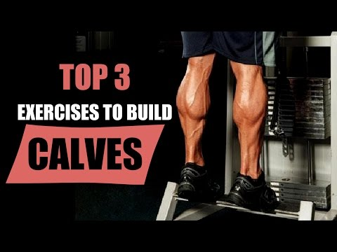 Top 3 Exercises to Build CALVES | Explanation with Muscle Anatomy by Guru Mann