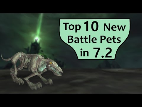 Top 10 New Battle Pets in WoW Patch 7.2