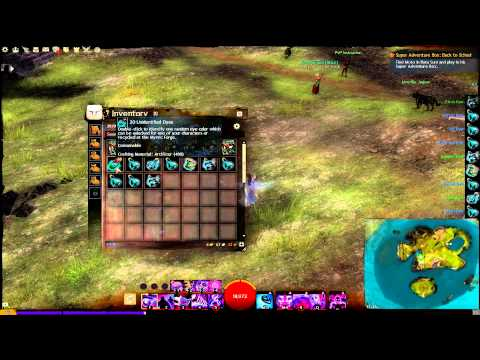 Guild Wars 2: Using 100 Unidentified Dyes