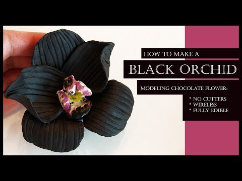 How to Make a BLACK ORCHID Modeling Chocolate Flower: NO CUTTERS, WIRELESS, FULLY EDIBLE