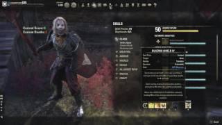 ESO PvP | Magicka Dragonknight PvP Build Video | One Tamriel