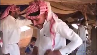 موسم قص صوف الغنم  العراق  بادية السماوه