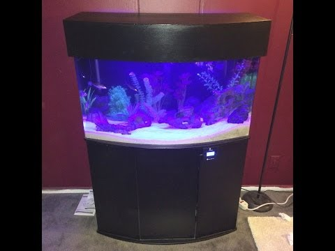 46 gallon bow front acrylic aquarium set up and Canopy build by: Jake Pitts