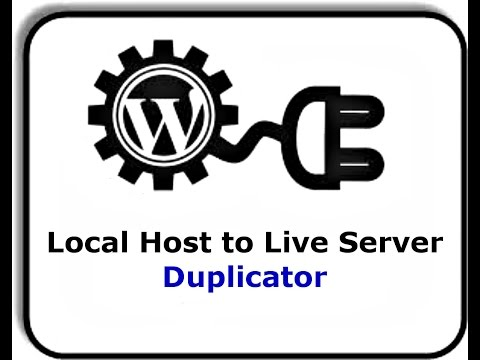 How to migrate WordPress site from localhost to server | Duplicator Plugin